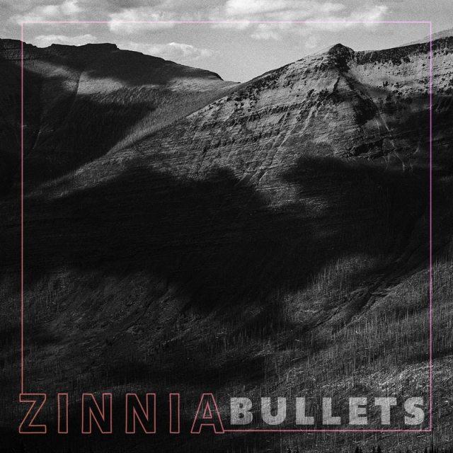 Zinnia - Bullets