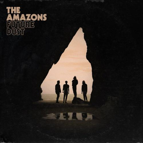 The Amazons Future Dust